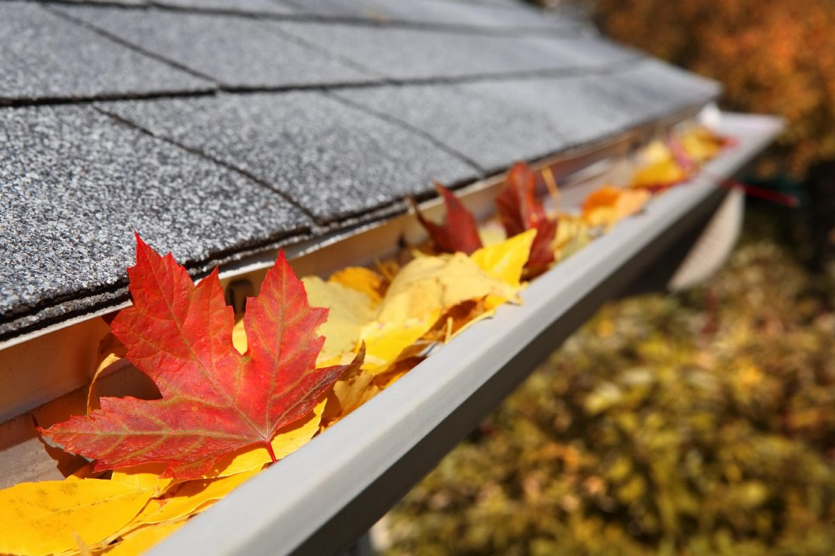 Fall-Cleaning List for Your Home